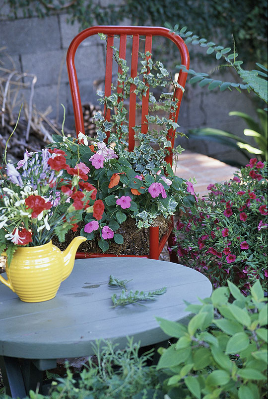 стул для растений