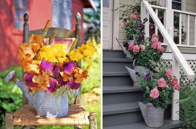 цветы в садовых лейках