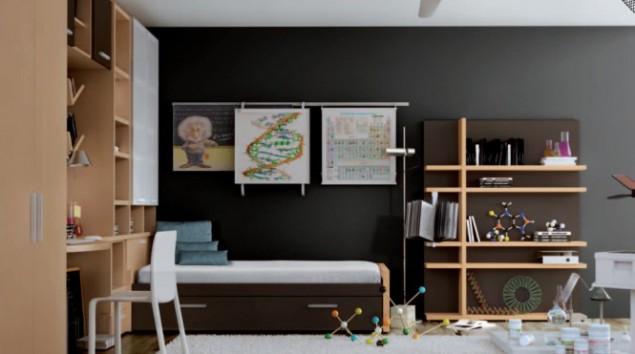 ученый, интерьер комнаты детской