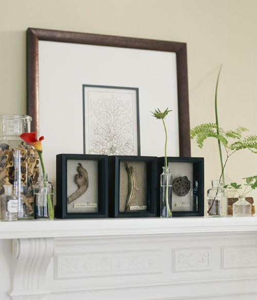 дары природы на полке, идеи для дома своими руками