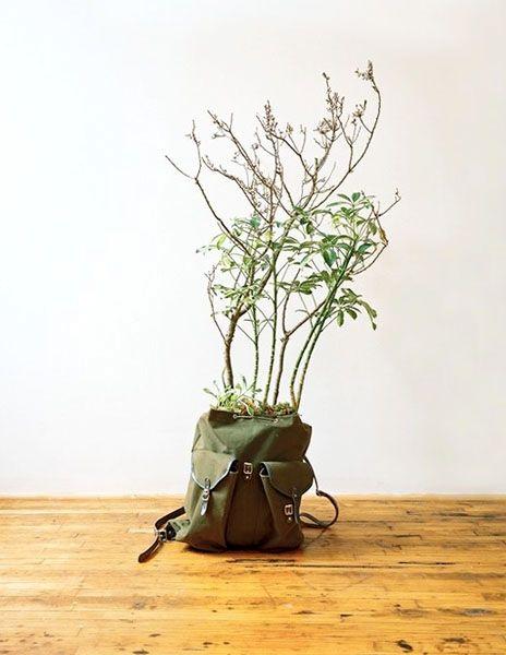 цветочный горшок из рюкзака