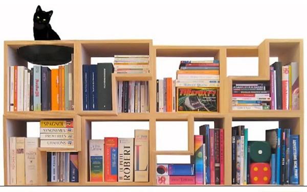 книжный стеллаж Cat Library