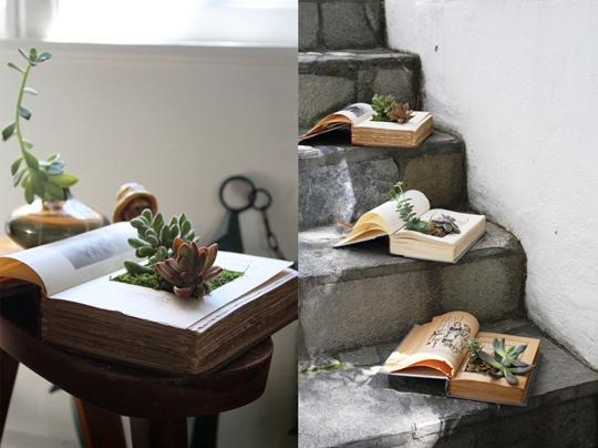 Горшок для кактуса сделать