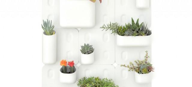 Вертикальный сад Urbio в квартире