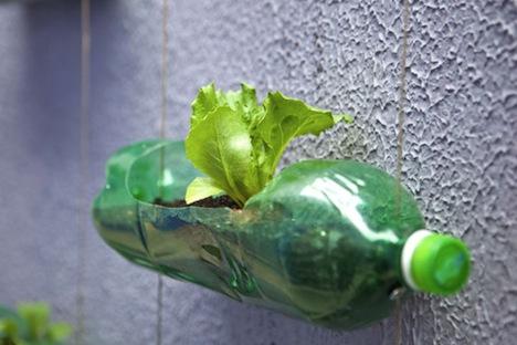 вертикальный подвесной сад из пластиковых бутылок