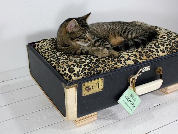 лежанка для кошки своими