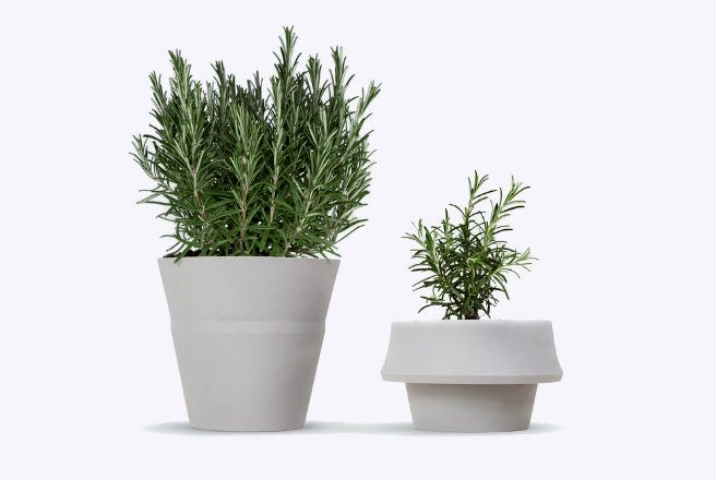 Fold Pot - горшки, которые растут вместе с растениями