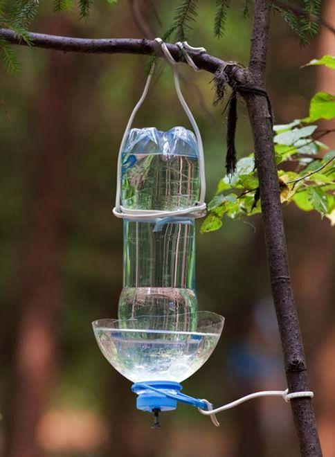 поилка для птиц из пластиковой бутылки своими руками