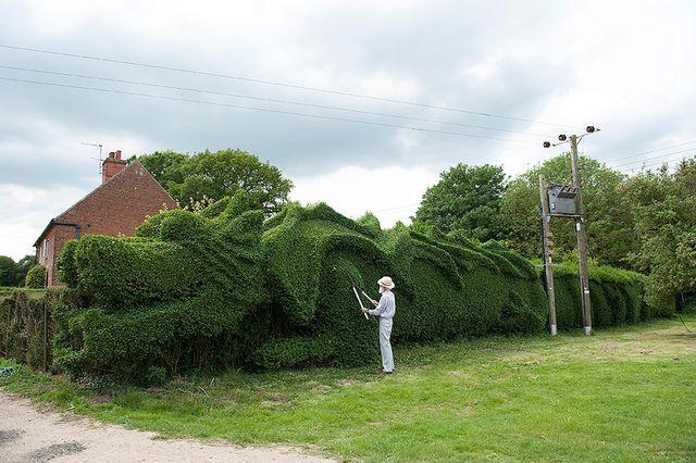 зеленый забор в виде дракона