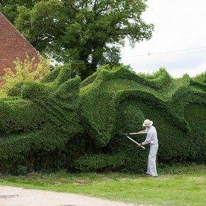 Зеленая изгородь в виде огромного дракона
