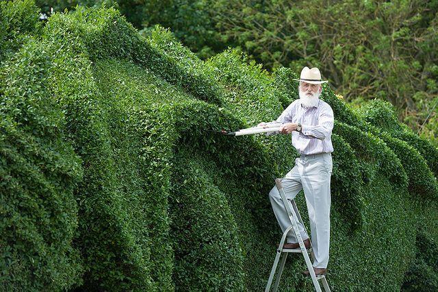John Brooker , автор зеленой изгороди в виде дракона