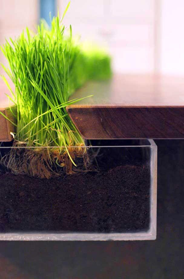 стол с травой Planter