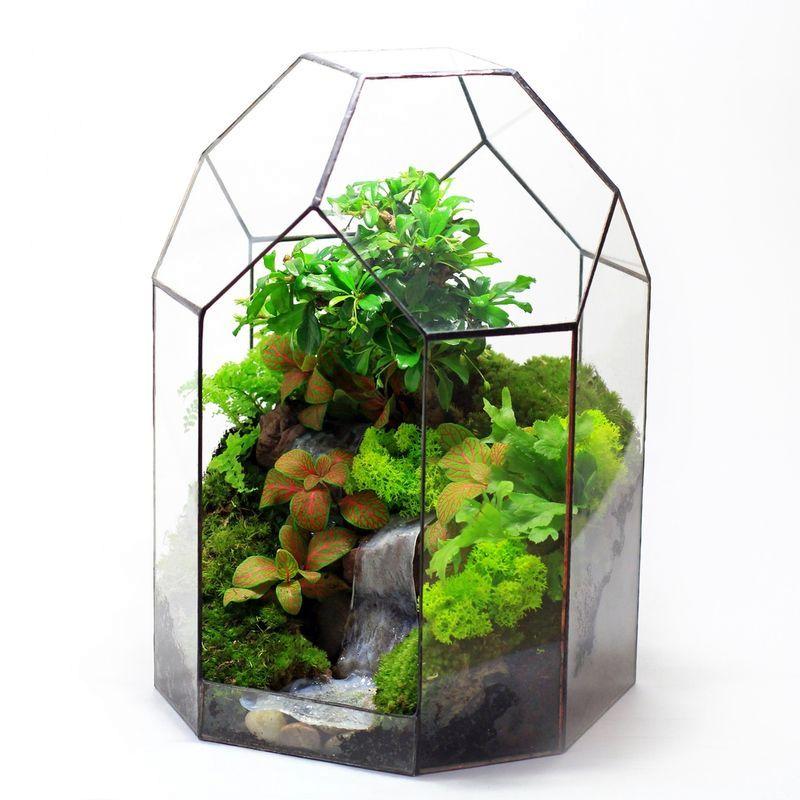 флорариум тропический лес с имитацией водопада