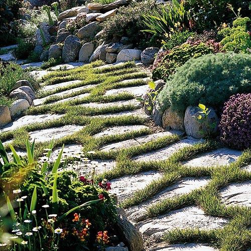 зеленая садовая дорожка