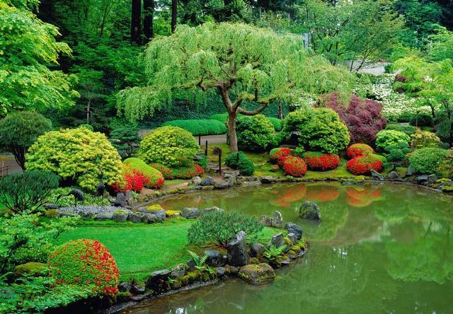 декоративный японский пруд