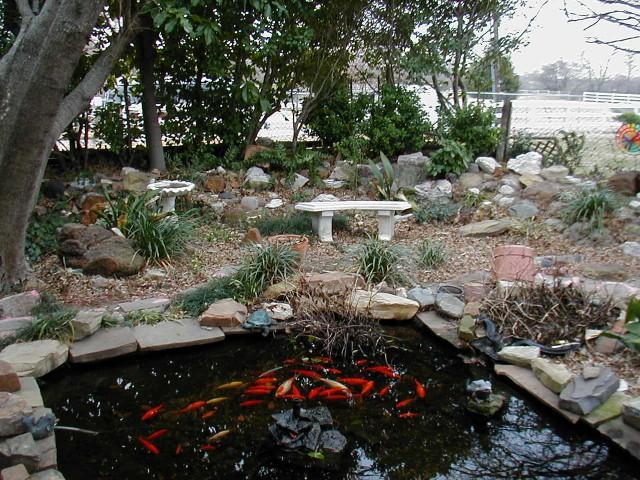 прямоугольный декоративный пруд