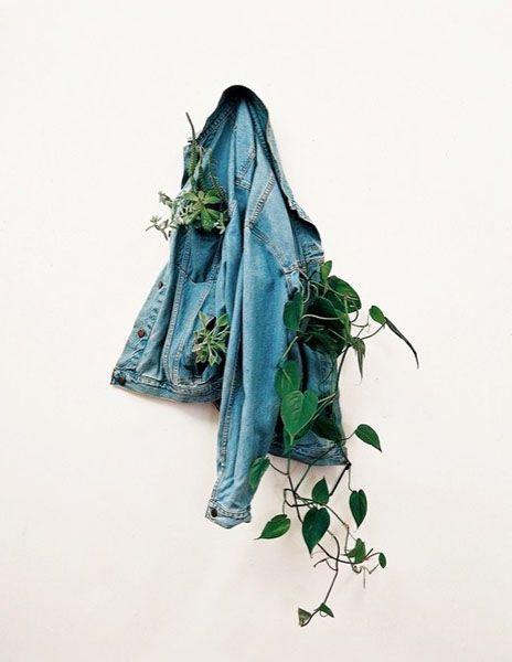цветочный горшок из куртки