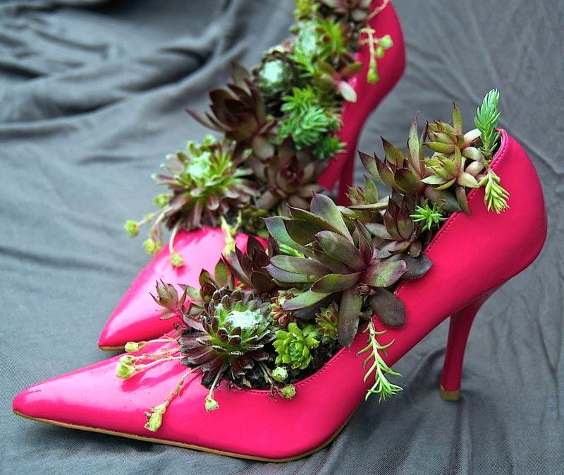 цветочные горшки из туфлей
