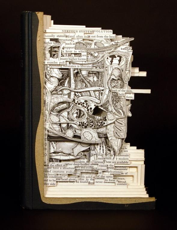 Brian Dettmer книжное искусство