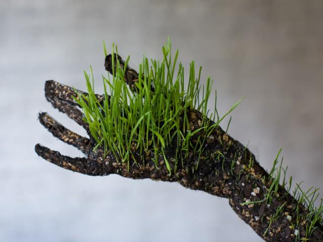 рука, скульптура из растений mathilde roussel-giraudy