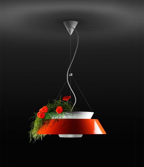 люстра - комнатные растения