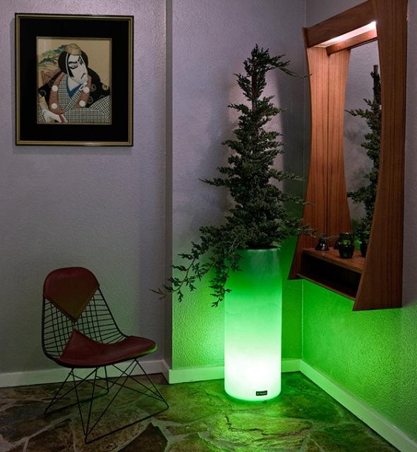 светящийся зеленый вазон