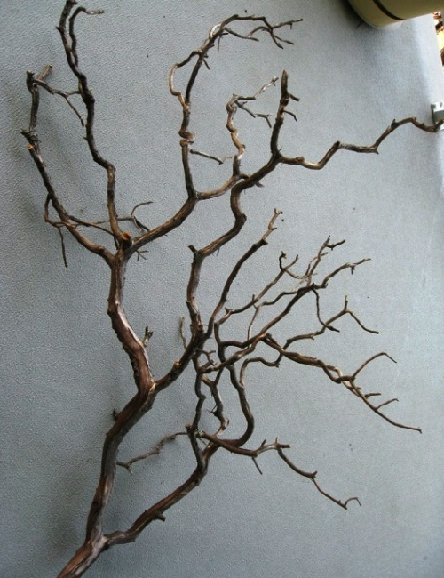branch-decor-wall-05