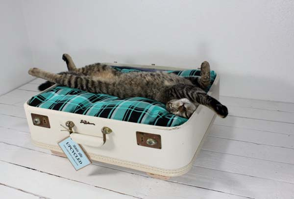 лежанка для кошки своими руками из старого чемодана