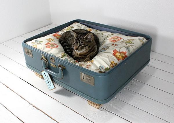 кошачья лежанка из чемодана