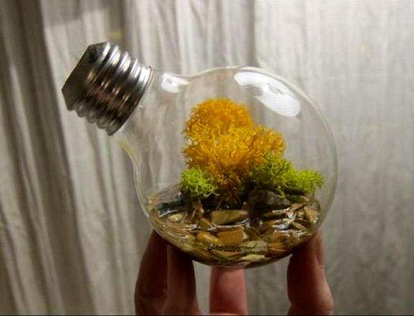 ваза для мха из лампочки