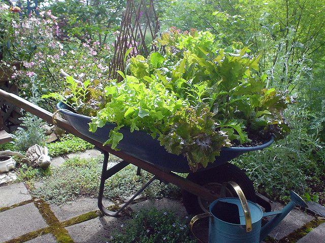 repurposed-planter-09
