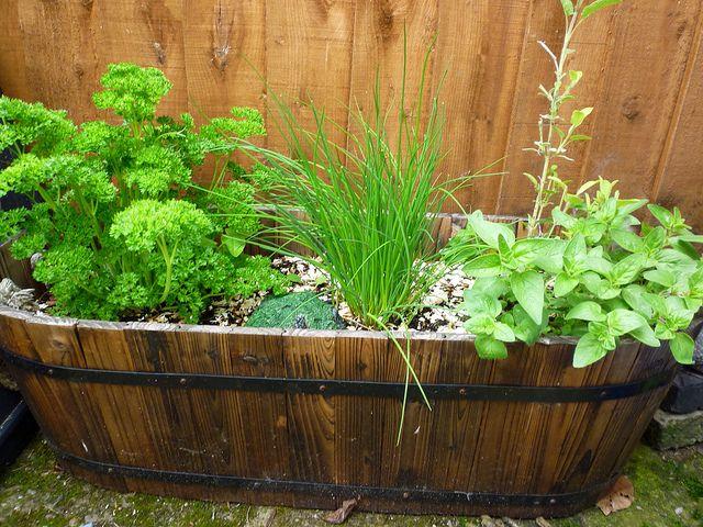repurposed-planter-11