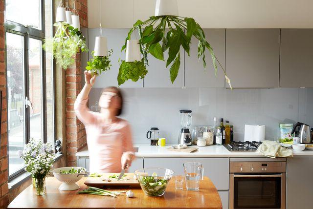 вертикальный перевернутый сад sky planter