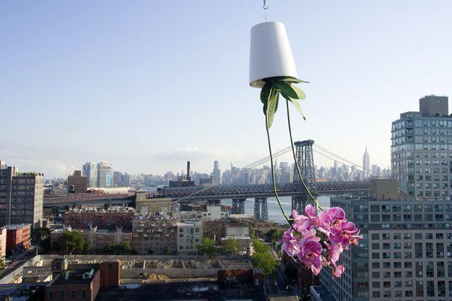 вертикальный подвесной сад перевернутый горшок sky planter
