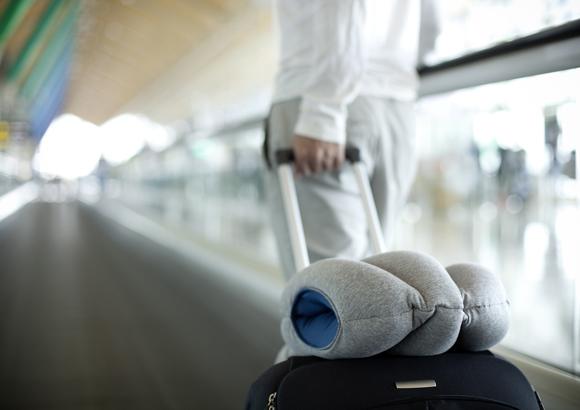подушка страус в аэрпорту