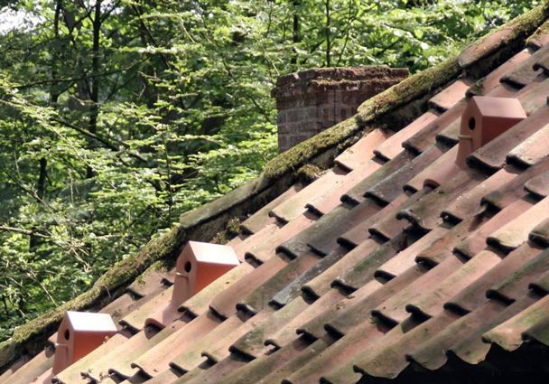 домики для птиц, интегрированные с черепицей