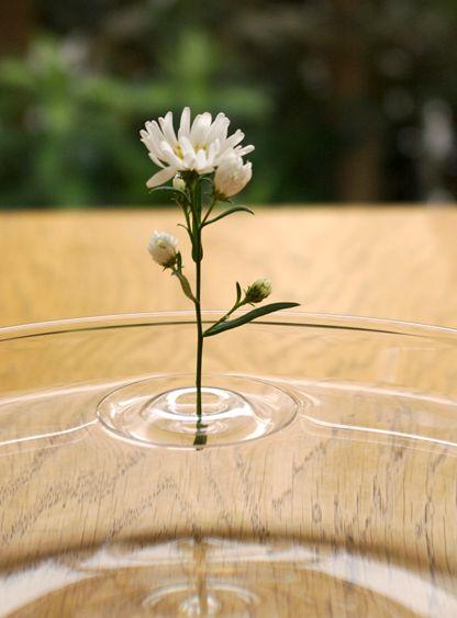 насадки для цветов - вазы в виде кругов на воде