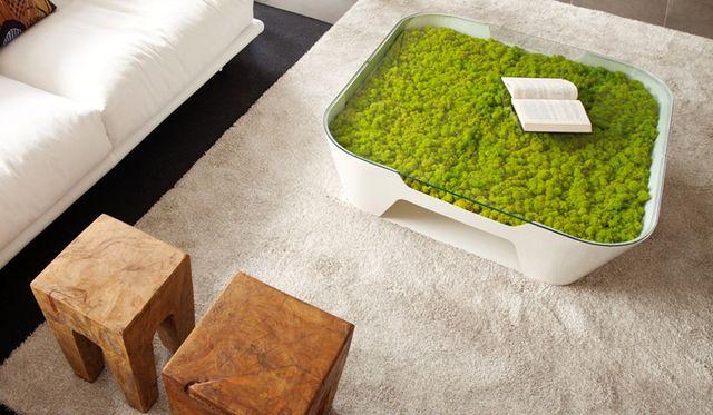 журнальный столик с декоративным мхом Moss Design