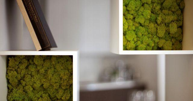 мох в стеллаже Moss Design