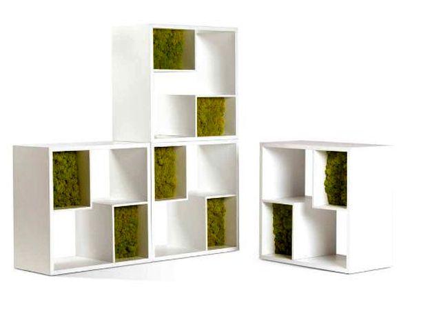 декоративный мох в стеллаже Moss Design