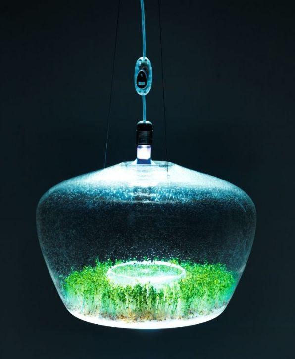 лампа для растений greenhouse