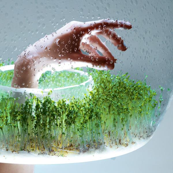 потолочная лампа для растений