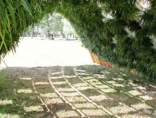 беседка - павильон с живыми растениями внутри