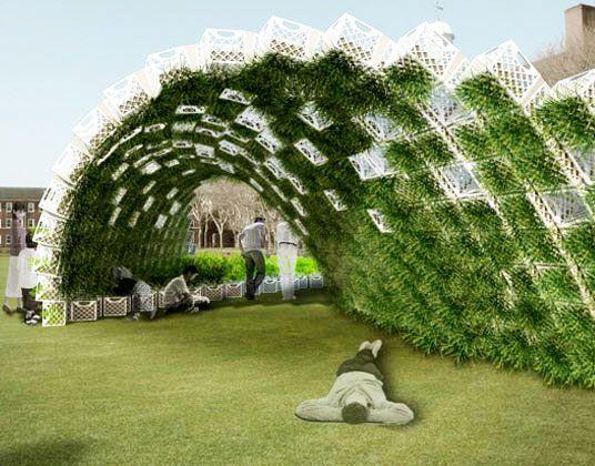 зеленая стена волной из ящиков с растениями