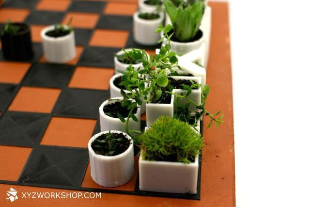 мини-горшочки с растениями в виде шахматных фигур