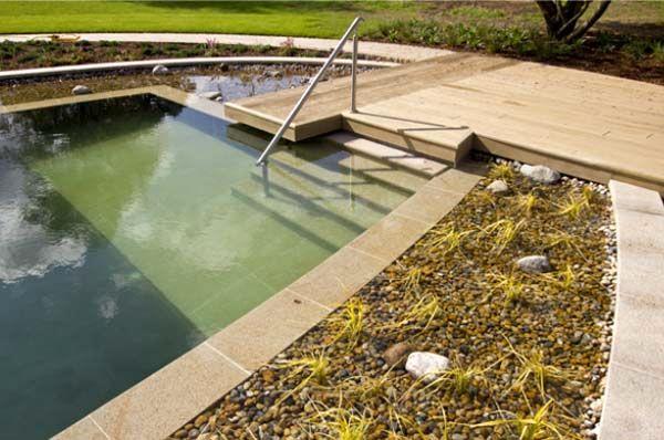 плавательный пруд бассейн