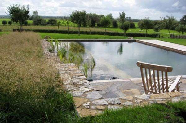 квадратный пруд бассейн на даче