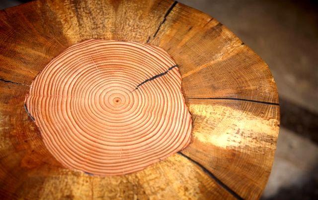 текстура деревянного табурета woodnwonder