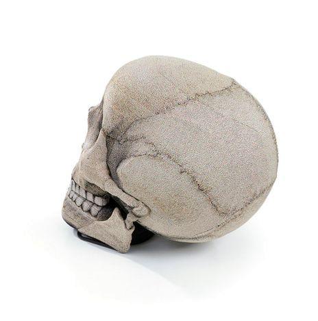 большое кресло череп от chic sin design