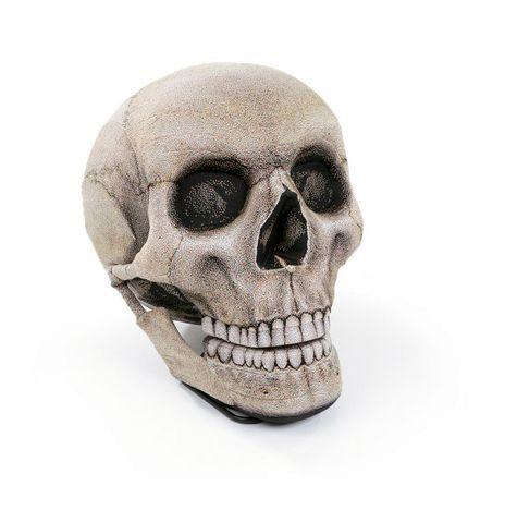 кресло-череп от chic sin design
